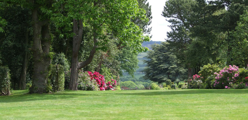 Ogrodowy poradnik – systemy nawadniające ogród